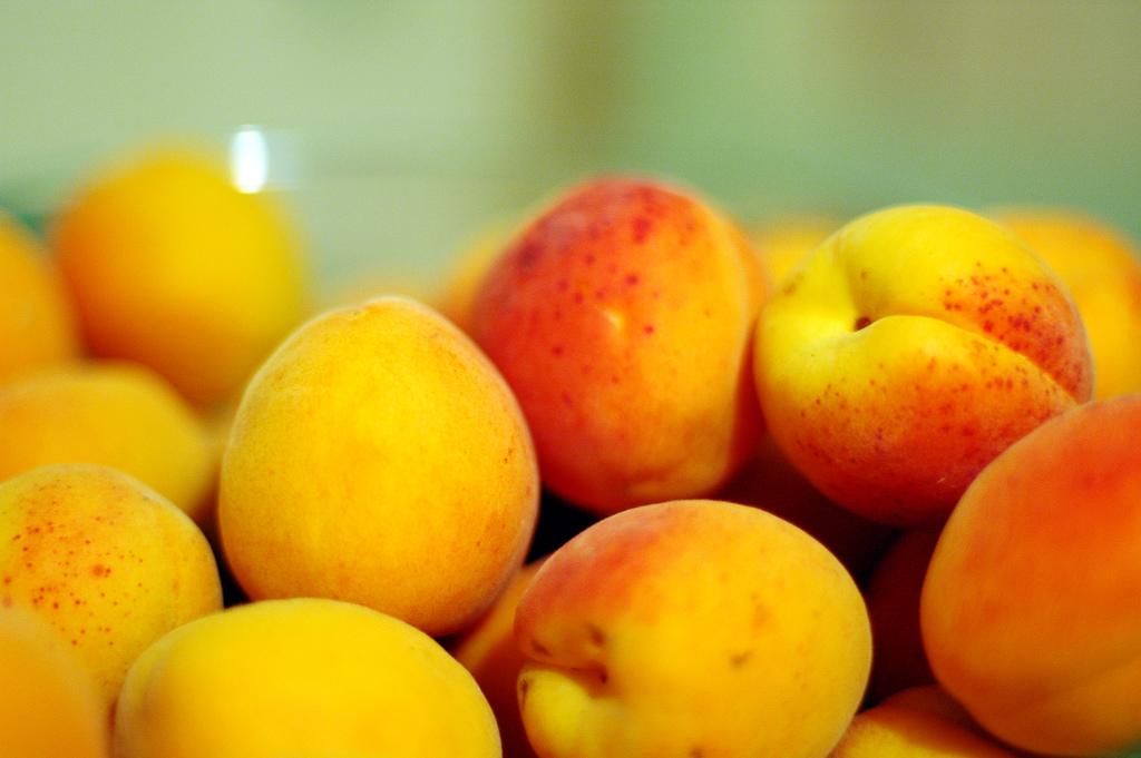 damier-abricots
